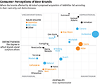 consumer perceptions of beer brands